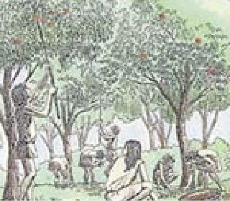 縄文時代3